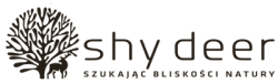Shy Deer Ekotyki